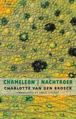 Chameleon Nachtroer