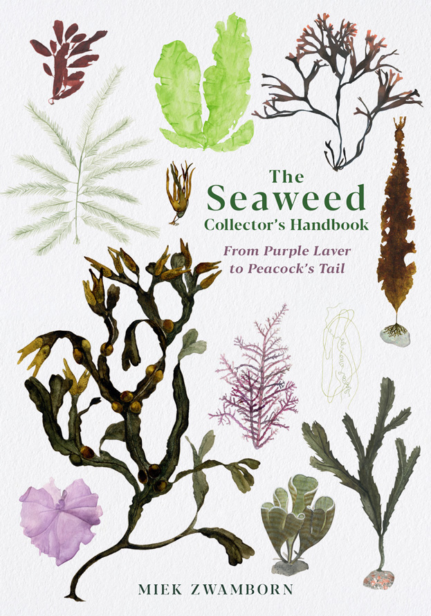 The Seaweed Collector's Handbook